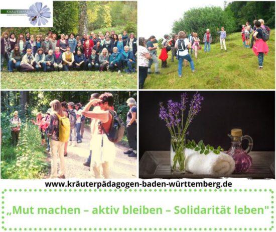 #LandFrauen-Projekte: Kräuterpädagoginnen